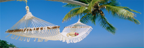 coconut net swing